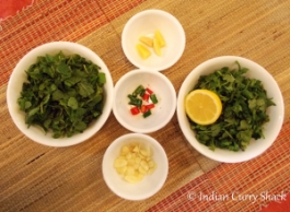 Green Chutney - Ingredients - Indian Curry Shack