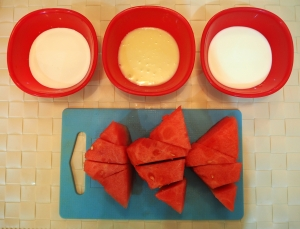 Watermelon Ice Cream - Ingredients - Indian Curry Shack